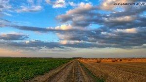 Erken uyarı ile 20 milyon lira çiftçinin cebinde kaldı