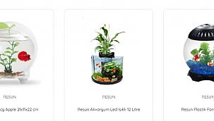 Fanus Akvaryum Fiyatları ve Çeşitleri Sizler İçin Pettema'da!