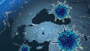 Koronavirüs salgınında vaka sayısı 9 bin 205'e ulaştı