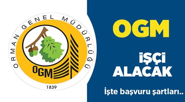 AKSARAY'DA ORMAN GENEL MÜDÜRLÜĞÜ 3 İŞÇİ ALACAK, İŞTE AYRINTILAR...