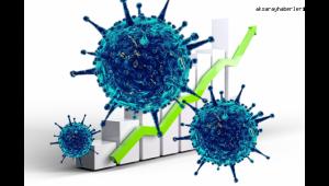 Koronavirüs salgınında vaka sayısı 5 bin 955'e ulaştı