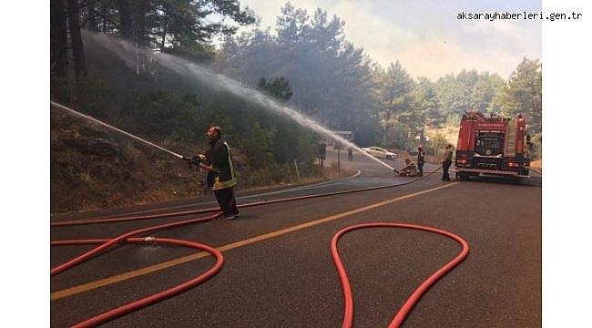 Yangınlardan etkilenen 203 kişiden 186'sı taburcu oldu